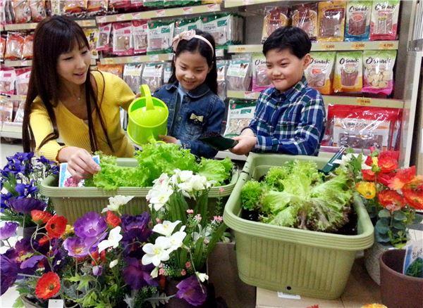 롯데마트, 봄맞이 가정용 원예용품 특가 판매