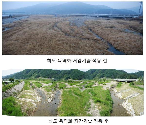 현대건설, 하천 생태계 복원 신기술 개발