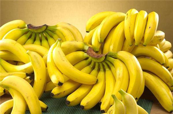 롯데마트, 8월 인기 과일 최대 30% 할인 판매