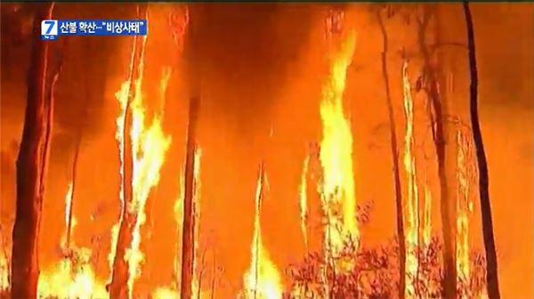 '이상고온' 호주, 산불 확산 일로… 아직도 불타는 中