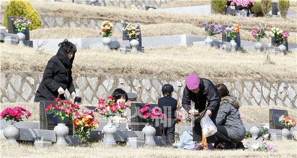 한식, 조상묘 찾은 성묘객들