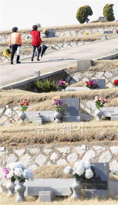 조상묘 찾는 성묘객들