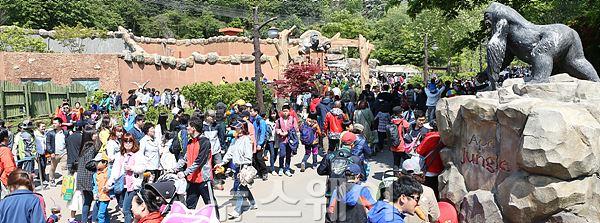 인파로 붐비는 '서울대공원' 사람구경? 나들이