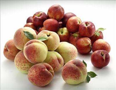 휴가철 가장 많이 팔리는 과일은?