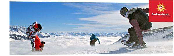 스위스프랑 환율 출렁···스위스 여행 준비중이라면?