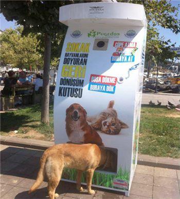 터키의 착한 자판기, 서울시에도 도입돼나···환경보전·유기동물 보호 '일석이조'