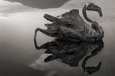 저주에 걸린 '나트론 호수', 동아프리카 탄자니아엔 어떤 비밀이?