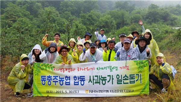 농협은행, '지역농협과 하나되기' 일손돕기 실시