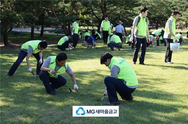 새마을금고중앙회, 선·정릉서 봉사활동 시행