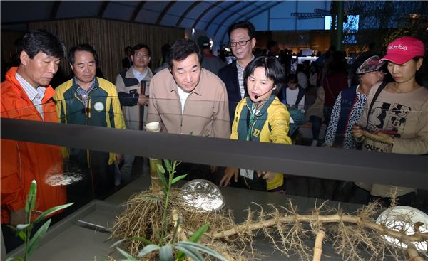 이낙연 전남지사, 담양세계대나무박람회 중간점검