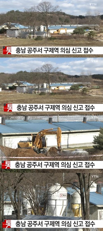 충남 공주시 돼지농가서 구제역 의심신고 접수···결과 18일 오전 나올 예정