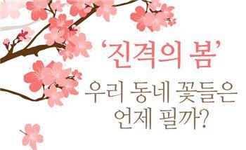 '진격의 봄' 우리 동네 꽃들은 언제 필까?