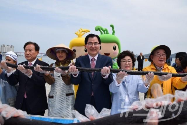216m 해초류대형김밥..장보고수산물축제