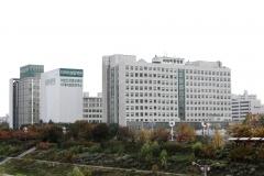 이대목동병원, 연구역량 강화한다