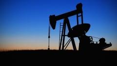 OPEC 감산 합의…韓수출-세계경제 영향 '촉각'
