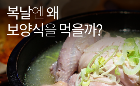 복날엔 왜 보양식을 먹을까?