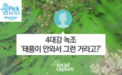 [소셜 캡처] 4대강 녹조 '태풍이 안와서 그런 거라고?'