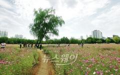 전국 맑고 큰 일교차…수도권·충남 미세먼지 '나쁨'