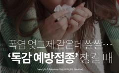 [카드뉴스] 폭염 엊그제 같은데 쌀쌀···'독감 예방접종' 챙길 때