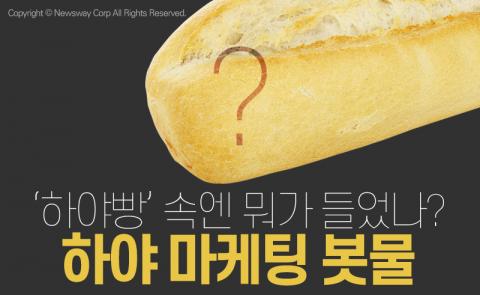 '하야빵' 속엔 뭐가 들었나? 하야 마케팅 봇물