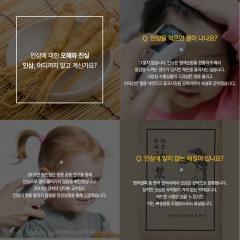 aT, '우리가 몰랐던 진짜 고려인삼 이야기' 한·중·영 3개 국어 발간