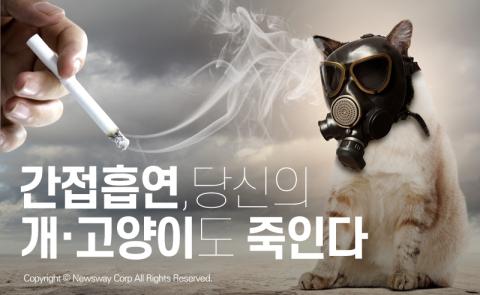 간접흡연, 당신의 개·고양이도 죽인다