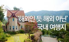 [카드뉴스] '해외인 듯 해외 아닌' 국내 여행지