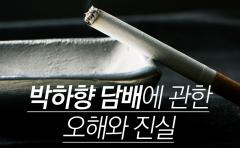 박하향 담배에 관한 오해와 진실