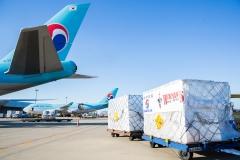 미국산 계란 100톤 14일 국내 도착…다음 주말부터 판매