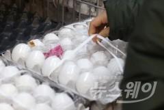 태국산 계란 긴급 수혈…가격 인하는 '아직'