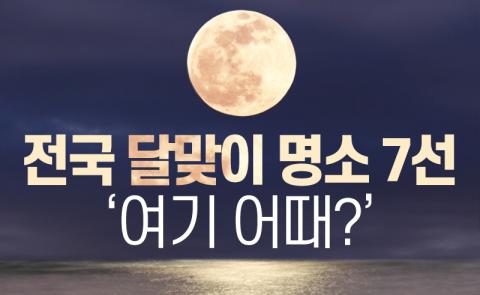 전국 달맞이 명소 7선 '여기 어때?'