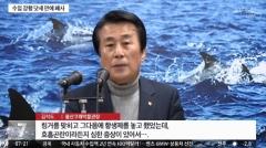울산 수입 돌고래 5일 만에 폐사···부검 결과 '혈흉' 발견
