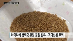 아마씨드 중금속도 검출…잡곡밥으로 주로 섭취 '우려'
