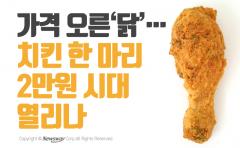 가격 오른 '닭'…치킨 한 마리 2만원 시대 열리나