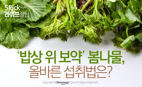 '밥상 위 보약' 봄나물, 올바른 섭취법은?
