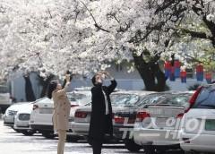 미세먼지 '보통'에 따뜻한 봄 날씨