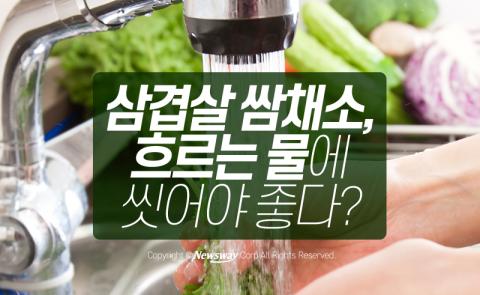 채소·과일 세척, '흐르는 물 VS 받은 물' 어디서?