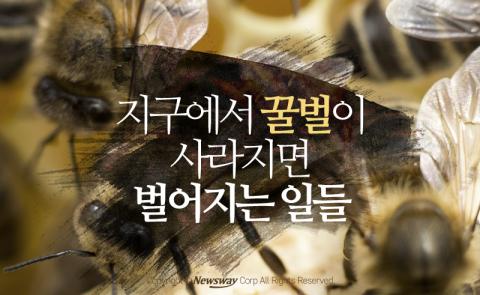 지구에서 꿀벌이 사라지면 벌어지는 일들
