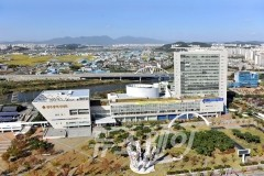 광주광역시, 지역 가전전자산업 도약 기틀 마련