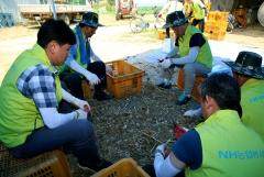 NH투자증권, '또 하나의 마을' 일손돕기