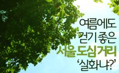 [카드뉴스] 여름에도 걷기 좋은 서울 도심 거리