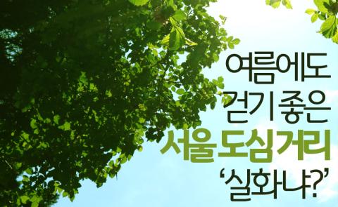 여름에도 걷기 좋은 서울 도심 거리