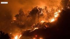 미국 캘리포니아 중부 산불 확산…요세미티 전력공급 끊길 위기