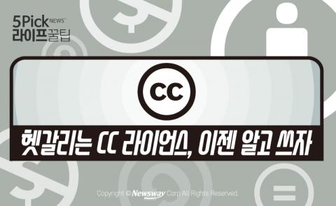 헷갈리는 CC 라이언스, 이젠 알고 쓰자