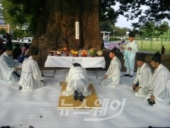 담양군, 천년 느티 대동한마당 행사 개최