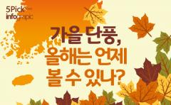 가을 단풍, 올해는 언제 볼 수 있나?