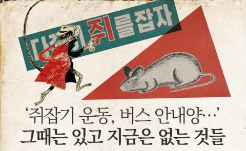 쥐 꼬리 하나당 연필 한 자루…그때 그 시절