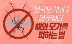 '한국 모기보다 더 무섭다' 해외 모기를 피하는 법