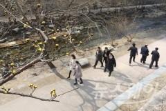 맑고 포근한 목요일…서울 아침 최저기온 -1도