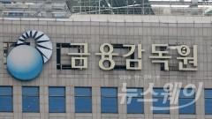 금감원, 부원장보 인사 단행…보험 담당에 '저승사자' 이성재